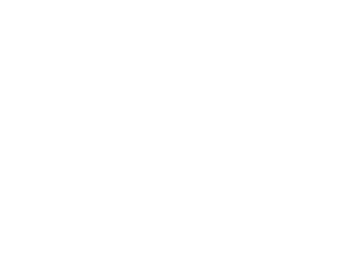 Paul & Daisy Soros Fellowships For New Americans Logo